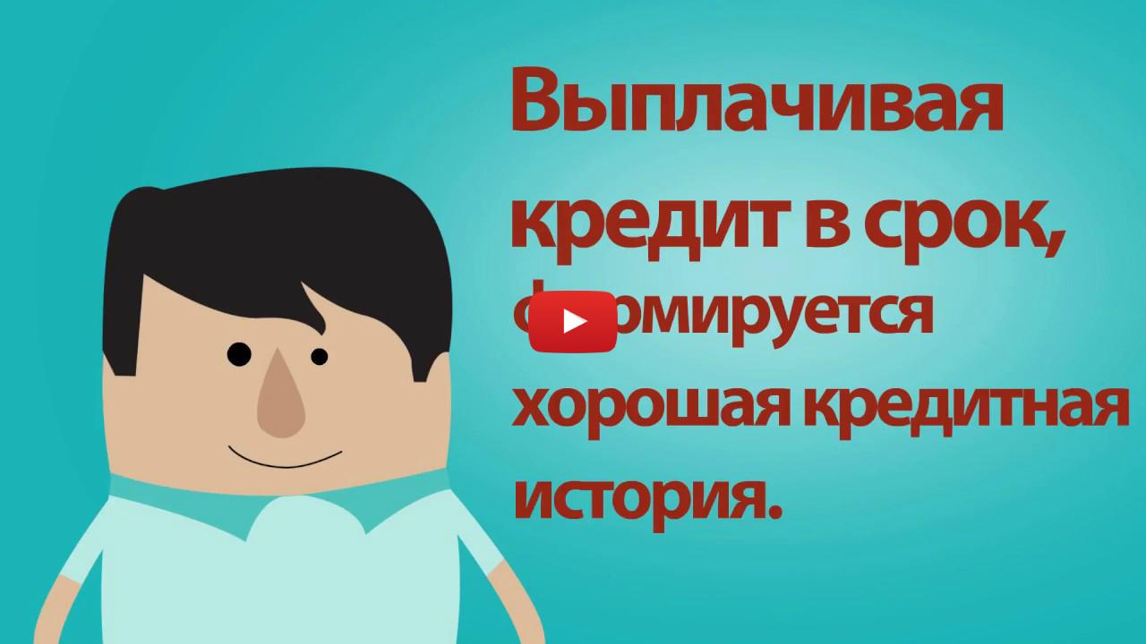 Zaimi365.com.ua